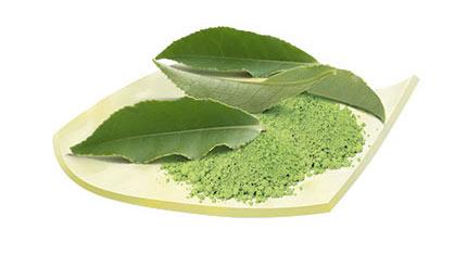 چای سبز ژاپنی متچا مسمر